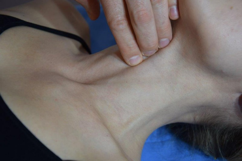 Kliniczna anatomia palpacyjna szyi